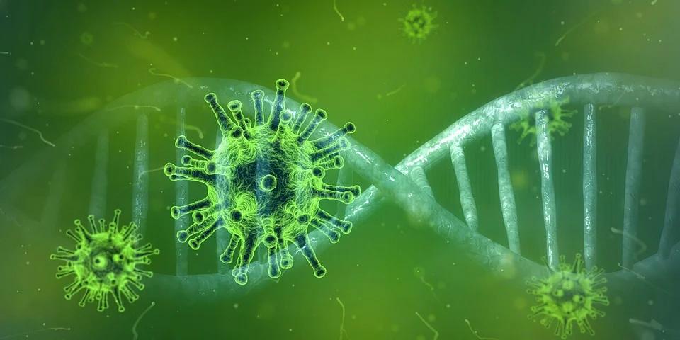 Corona virus and DNA double helix