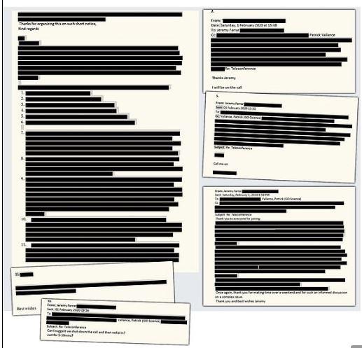 FOI of medical experts on Coronavirus, SARS-2, UK, Blacked out. Secrecy. Transparency. Censorship.