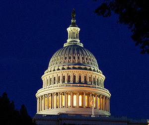 US Congress at night: Photo by Darren Halstead on Unsplash