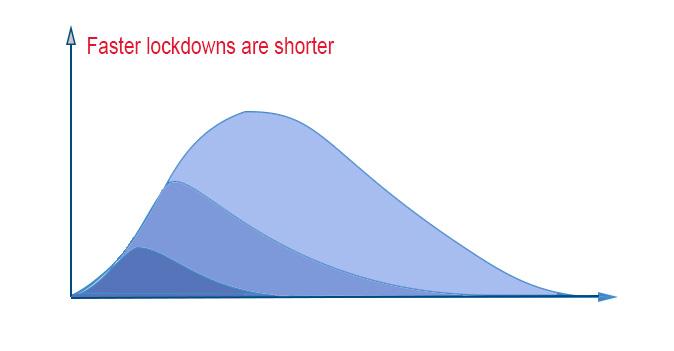 Lockdowns, graph, length, timing. shorter, faster restrictions.