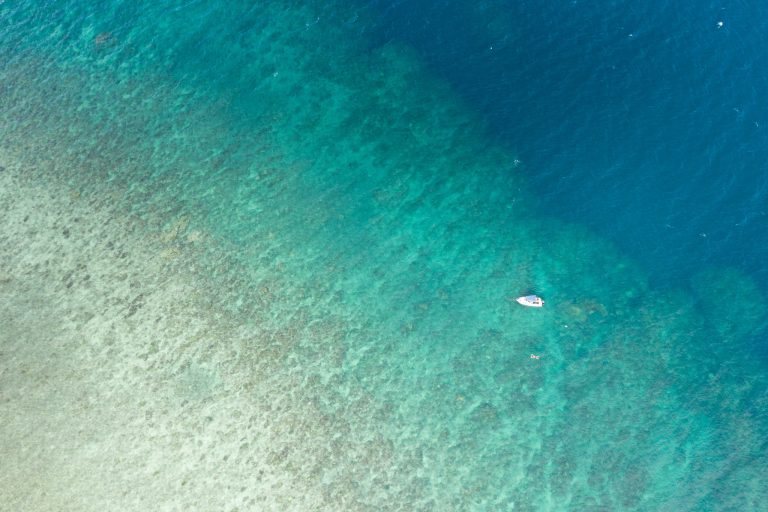 Pixie Reef, Aerial Survey photo, Great Barrier Reef.